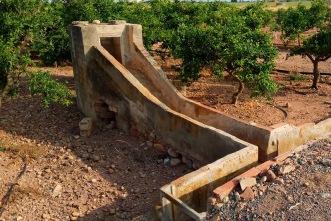 Sifó dins del terreny de cultiu