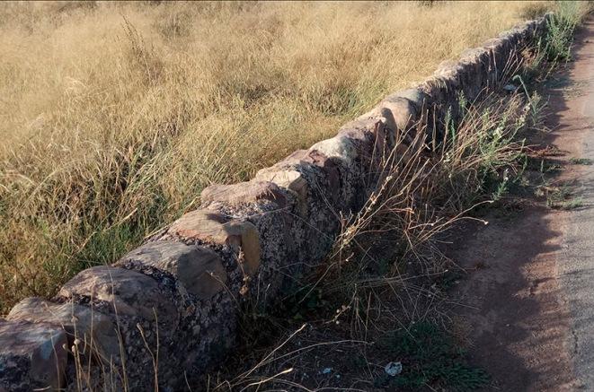 Muret delimitador horta-camí a la Punta