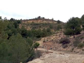 Vista general de la zona desde la parte baja